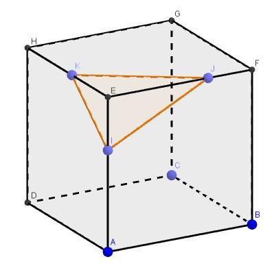 image8_activite1.jpg