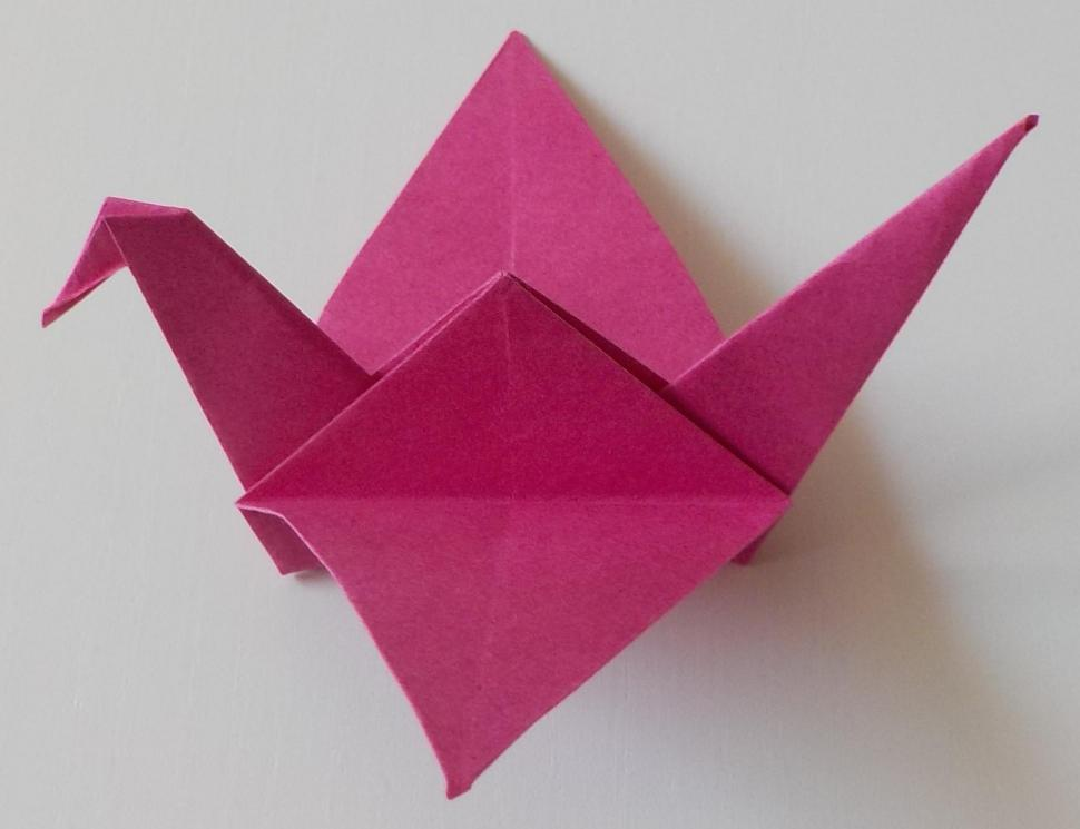 4-Oiseau-rr.jpg